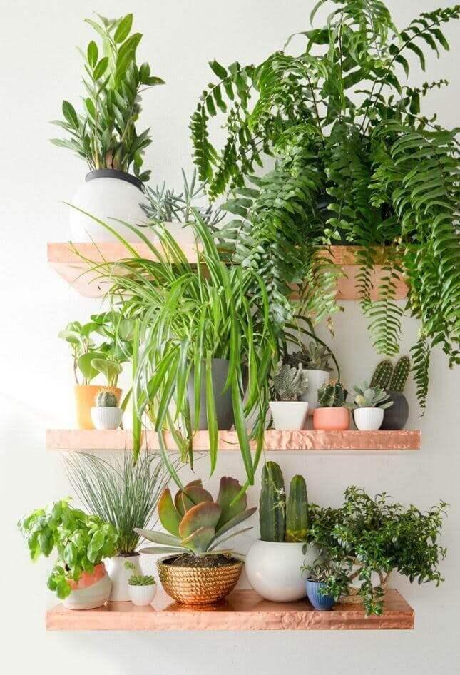 Greenery Modern Wall Shelving Ideas for Small mini garden