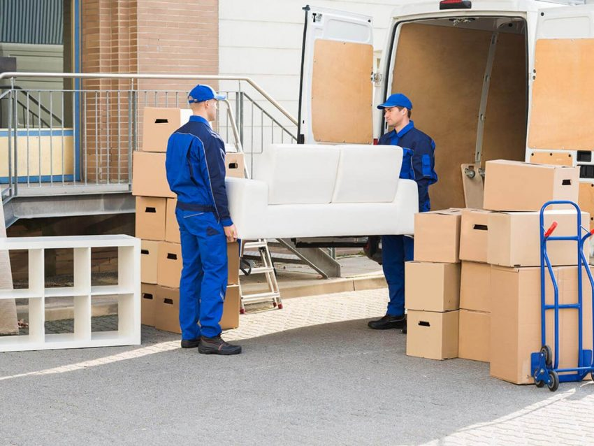Furniture Living Room Store Delivery Time