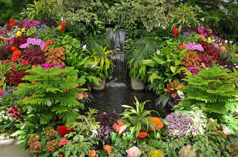 Final Words to Get Gardening Ideas for Small Yards