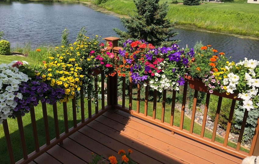 Gardening Ideas for Small Front Yards with Creative Space